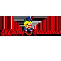 EL COLLAR HAWAIANO, S.A.
